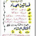 تعليم الاطفال اللغة العربية