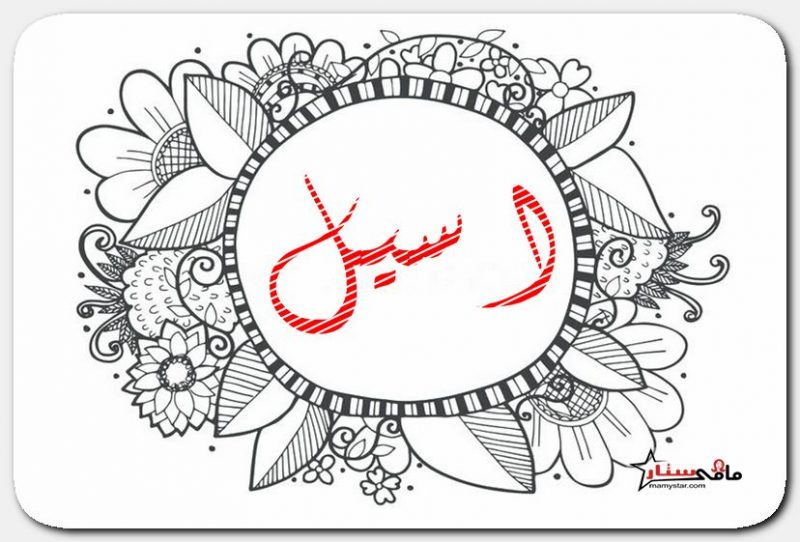 aseel name meaning
