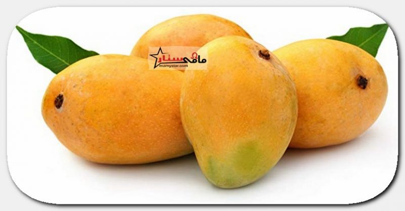 benefits of mango for hair