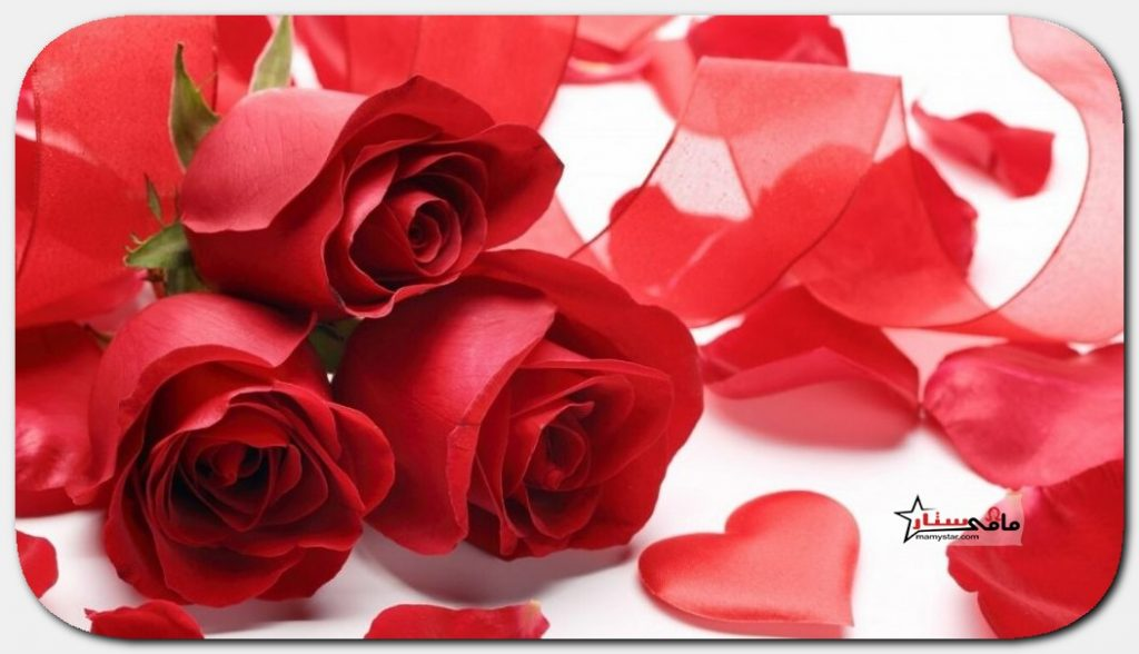 اجمل كلام في عيد الحب