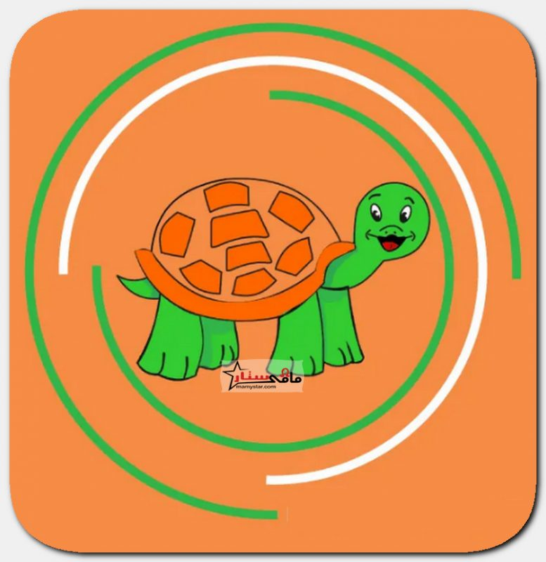 how to draw a turtle step by step